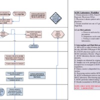 RELATED-DOCUMENT-Lab-Workflow-in-the-SCDU-(8809).pdf