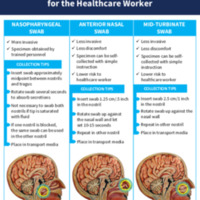 COVID-19 Specimen Collection Tips for the Healthcare Worker