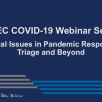 NETEC COVID-19 Webinar Series (4/29/20)/Online Course: Ethical issues in Pandemic Response, Triage and Beyond
