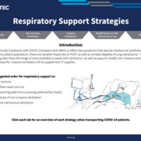Respiratory Support Strategies