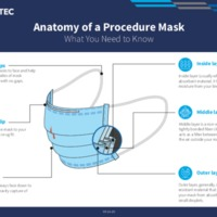 Anatomy of a Procedure Mask