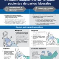 NETEC_LaborDelivery_070220_esp.pdf