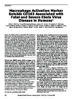 18-1326.pdf