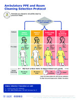 AMBULATORY PPE RESOURCES SELECTING PPE - AMBULATORY PPE AND CLEANING SELECTION PROTOCOL AUG2020.pdf